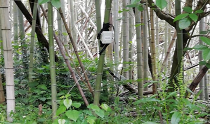 有害鳥獣対策監視センサー02